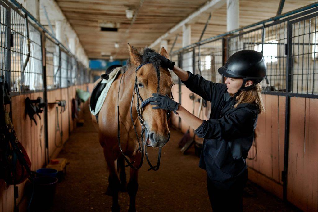 Femme caressant un cheval dans un centre équestre